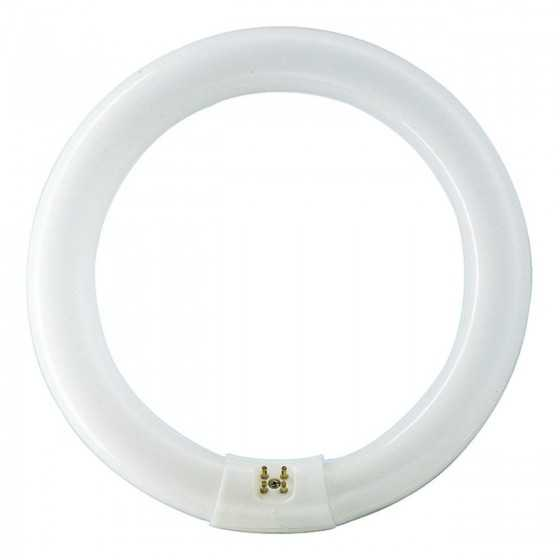 Tub neon fluorescent Master TL-E Circular Super 80 22W/865