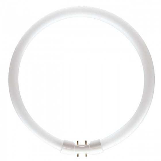 Tub neon fluorescent Master TL5 Circular 40W/830