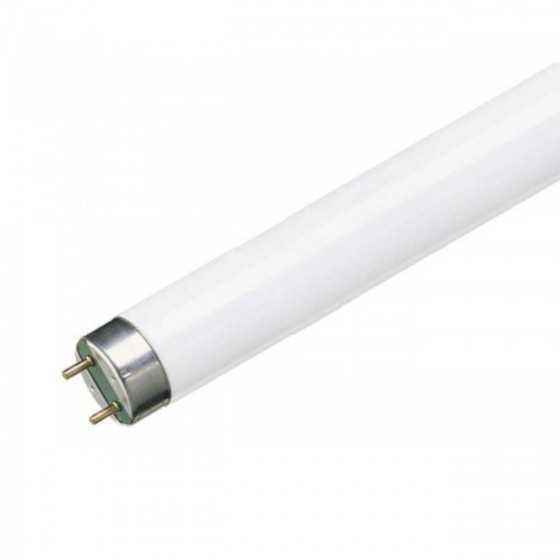 Tub neon fluorescent MASTER TL-D ECO 51w/865